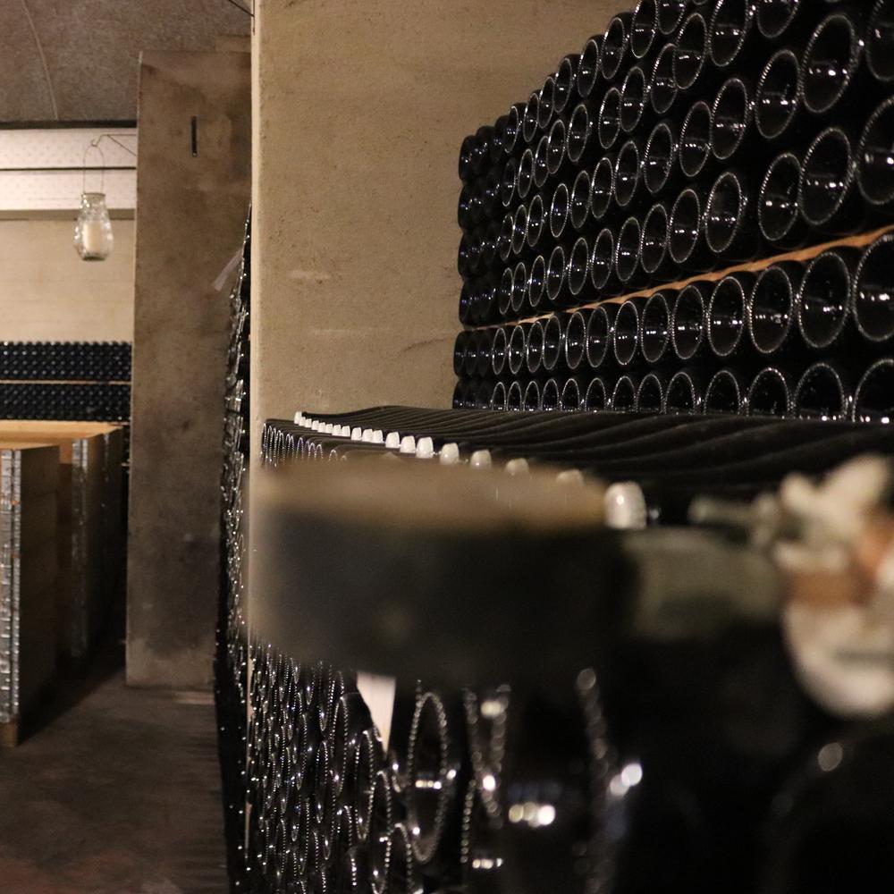 Cantine Aperte: al via il Wine Festival Cavaga