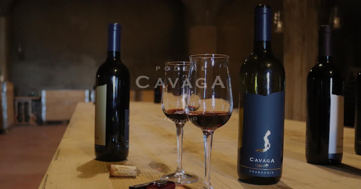 Cavaga Cantine Aperte Wine Festival